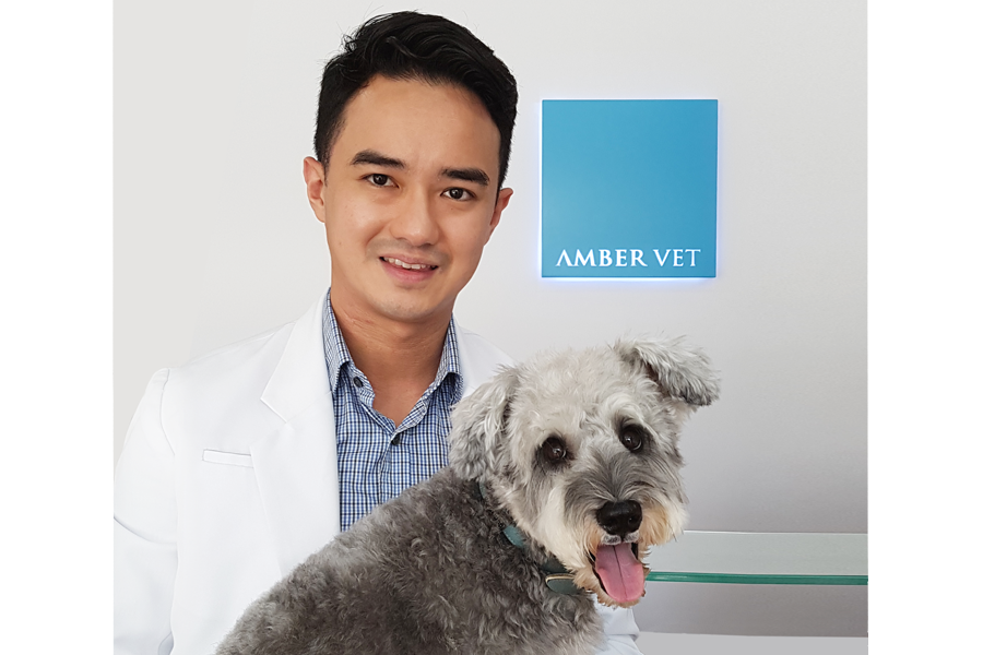 Dr Brian Loon - Amber Vet